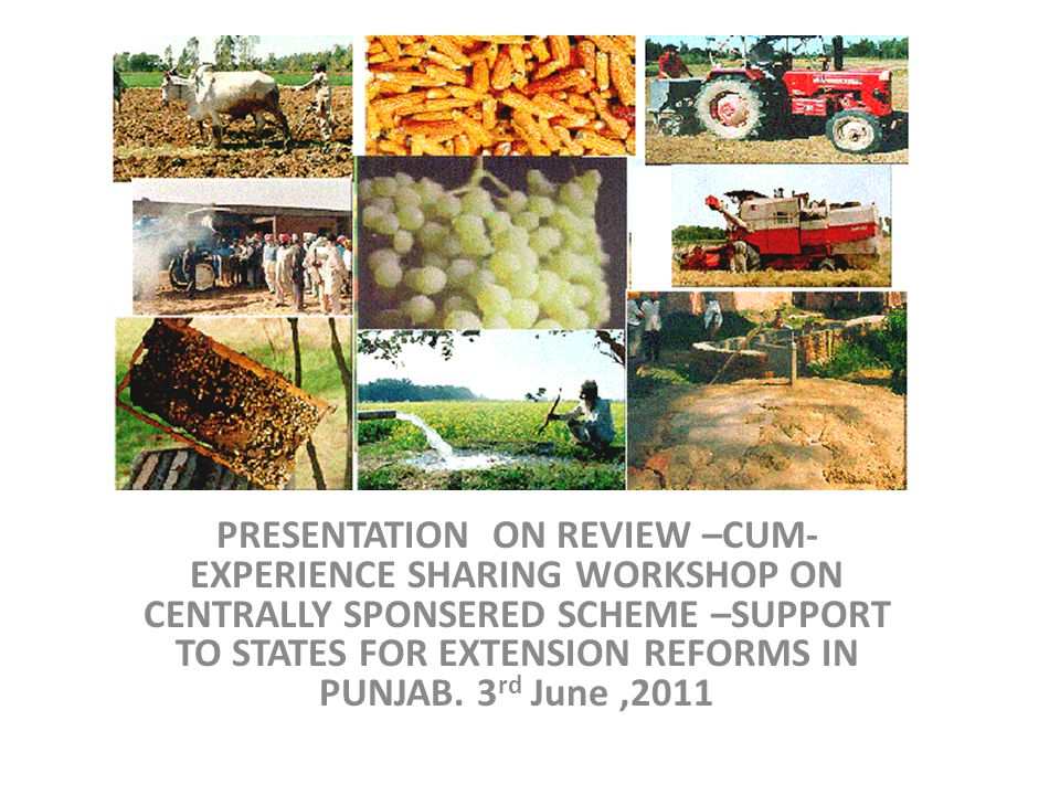 PRESENTATION ON REVIEW –CUM- EXPERIENCE SHARING WORKSHOP ON CENTRALLY SPONSERED SCHEME –SUPPORT TO STATES FOR EXTENSION REFORMS IN PUNJAB.
