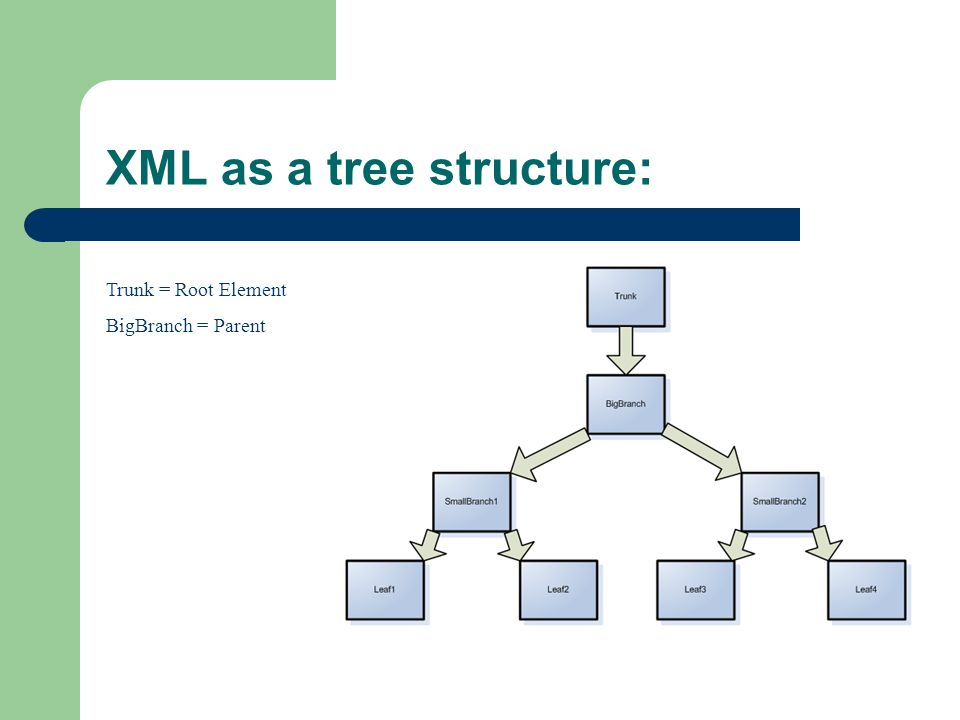 XML as a tree structure: Trunk = Root Element BigBranch = Parent