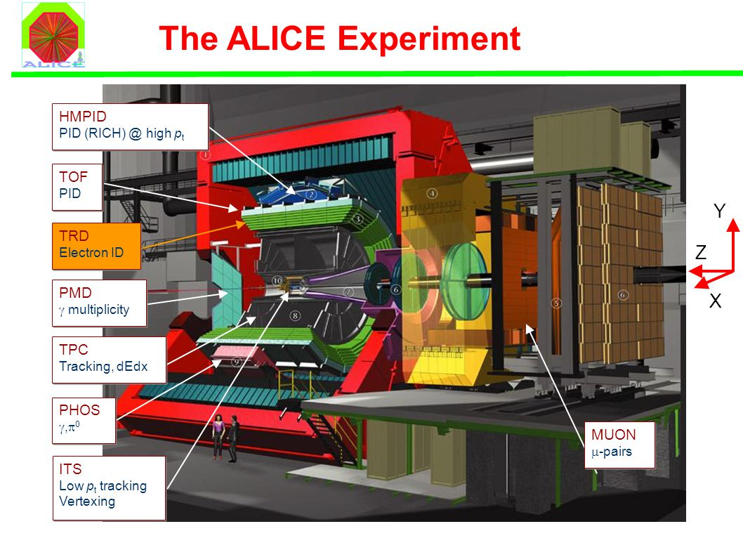The ALICE Experiment ITS Low p t tracking Vertexing TPC Tracking, dEdx TRD Electron ID TOF PID HMPID PID (RICH) @ high p t PHOS ,  0 MUON  -pairs PMD  multiplicity Y X Z