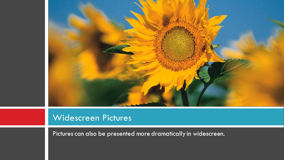 Pictures can also be presented more dramatically in widescreen. Widescreen Pictures