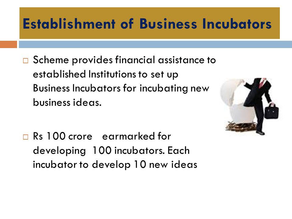 Establishment of Business Incubators  Scheme provides financial assistance to established Institutions to set up Business Incubators for incubating n