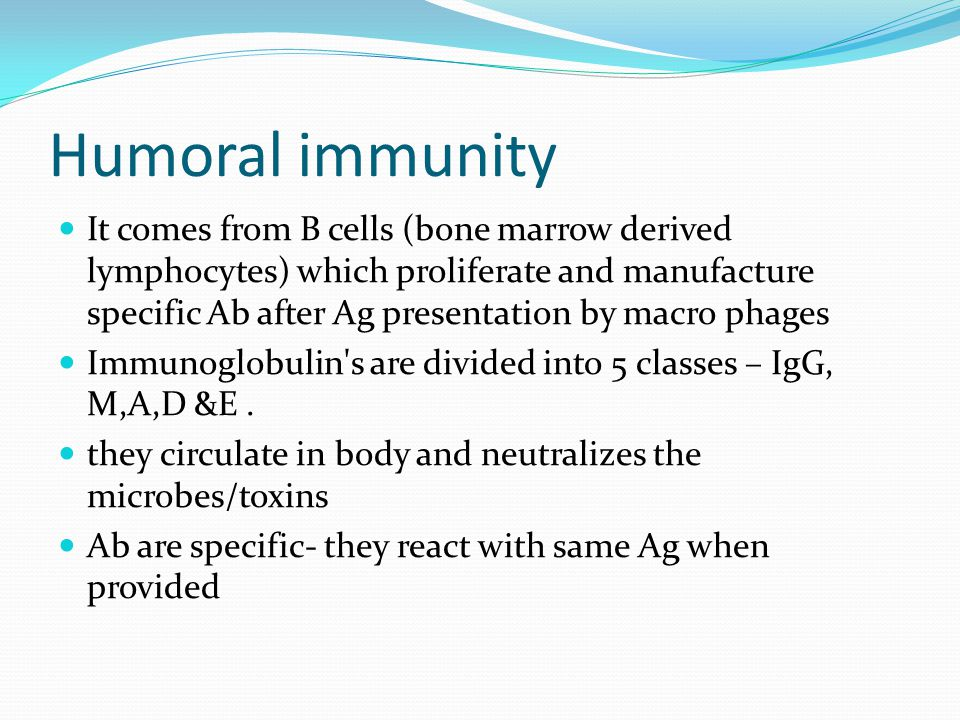 Humoral immunity It comes from B cells (bone marrow derived lymphocytes) which proliferate and manufacture specific Ab after Ag presentation by macro phages Immunoglobulin s are divided into 5 classes – IgG, M,A,D &E.