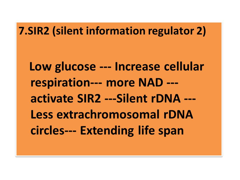 7.SIR2 (silent information regulator 2) Low glucose --- Increase cellular respiration--- more NAD --- activate SIR2 ---Silent rDNA --- Less extrachromosomal rDNA circles--- Extending life span 7.SIR2 (silent information regulator 2) Low glucose --- Increase cellular respiration--- more NAD --- activate SIR2 ---Silent rDNA --- Less extrachromosomal rDNA circles--- Extending life span