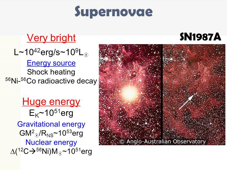 Supernovae SN1987A Very bright L~10 42 erg/s~10 9 L  Energy source Shock heating 56 Ni- 56 Co radioactive decay Huge energy E K ~10 51 erg Gravitational energy GM 2  /R NS ~10 53 erg Nuclear energy  ( 12 C  56 Ni)M  ~10 51 erg