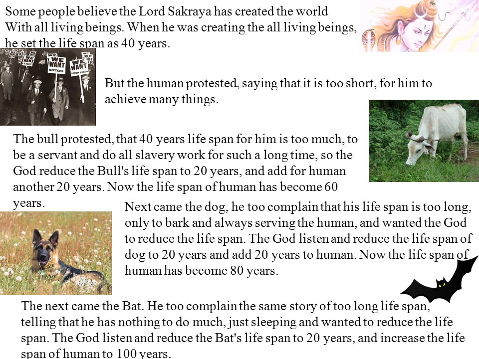 Some people believe the Lord Sakraya has created the world With all living beings.