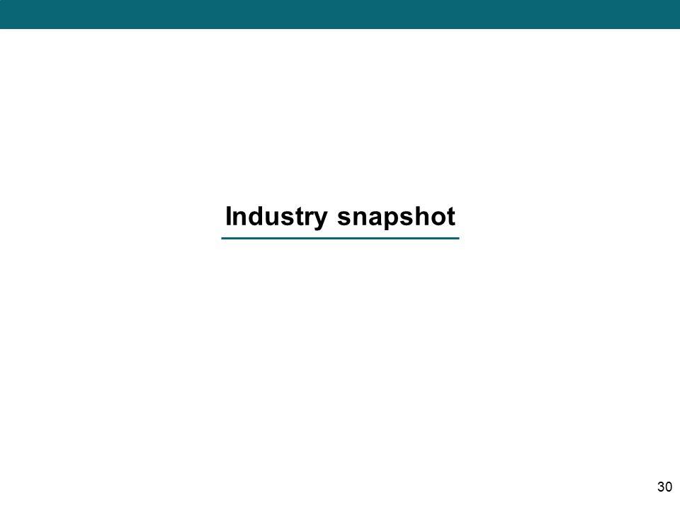 Industry snapshot 30