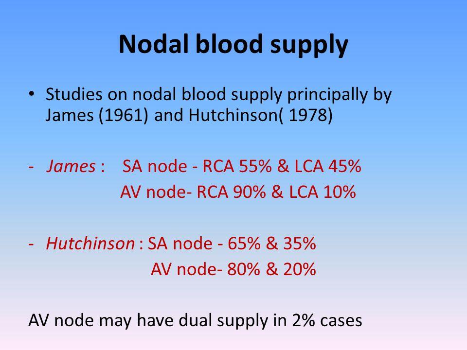 Nodal blood supply Studies on nodal blood supply principally by James (1961) and Hutchinson( 1978) - James : SA node - RCA 55% & LCA 45% AV node- RCA