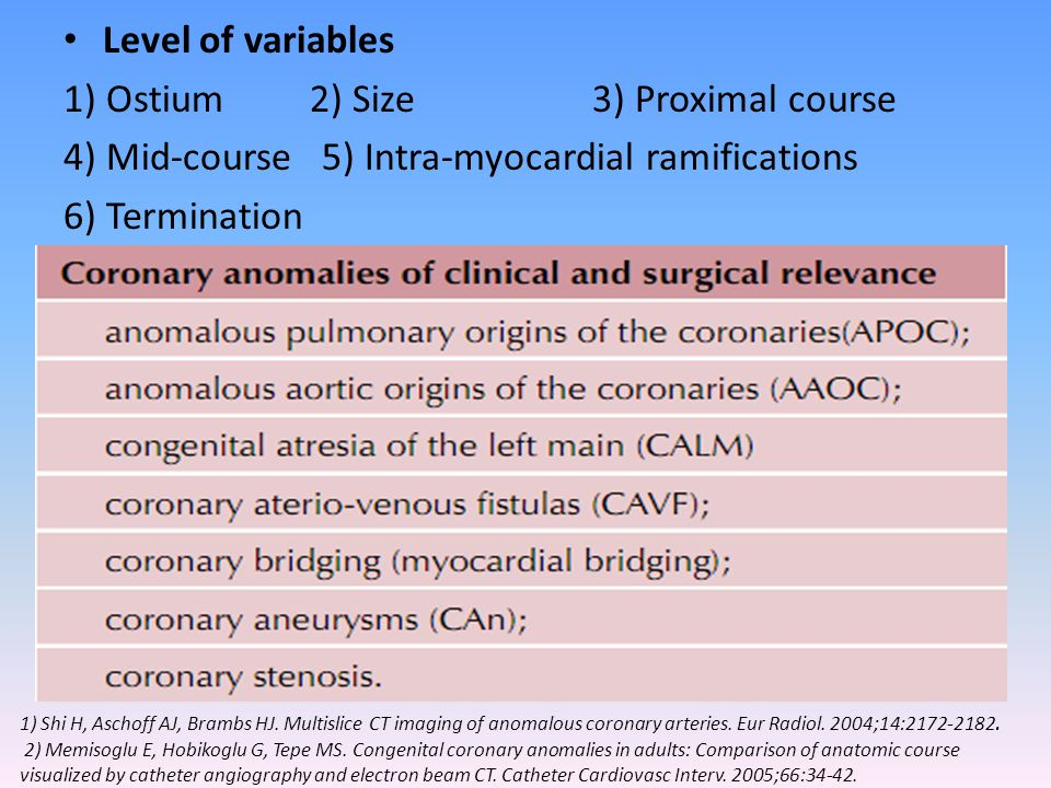 Level of variables 1) Ostium 2) Size 3) Proximal course 4) Mid-course 5) Intra-myocardial ramifications 6) Termination MSCT with retrospective ECG gat