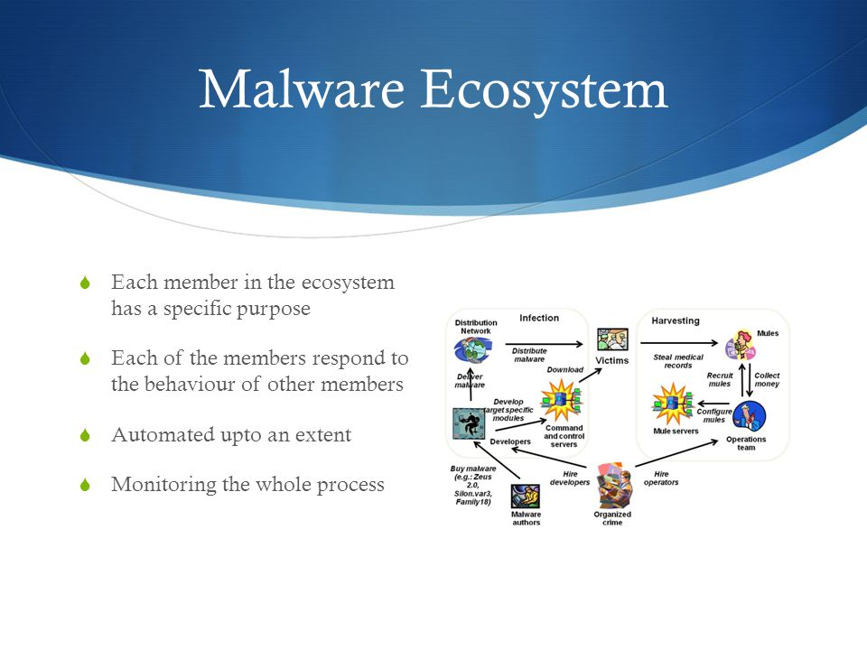 Malware Ecosystem  Each member in the ecosystem has a specific purpose  Each of the members respond to the behaviour of other members  Automated upto an extent  Monitoring the whole process