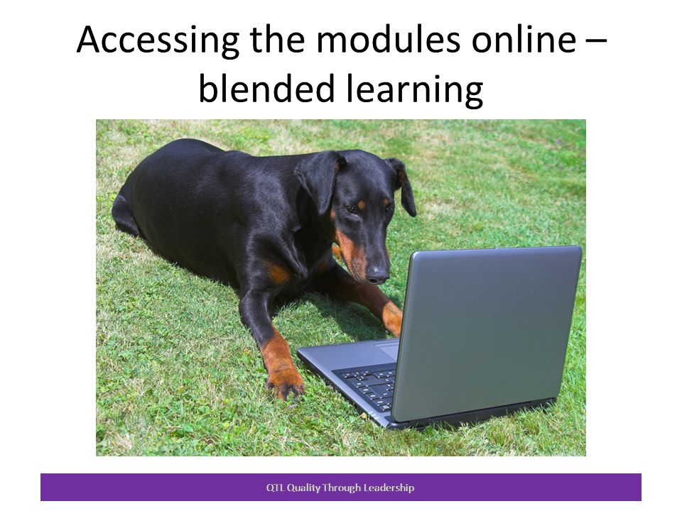 Accessing the modules online – blended learning QTL Quality Through Leadership