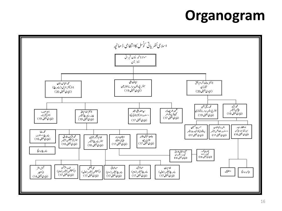 Organogram 16