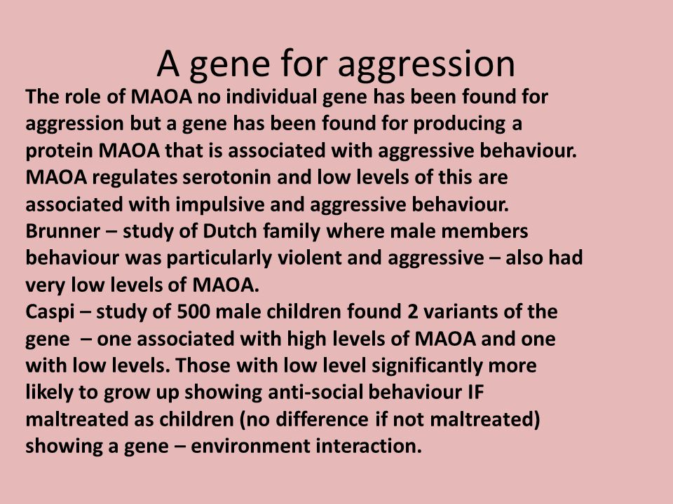 A gene for aggression The role of MAOA no individual gene has been found for aggression but a gene has been found for producing a protein MAOA that is associated with aggressive behaviour.