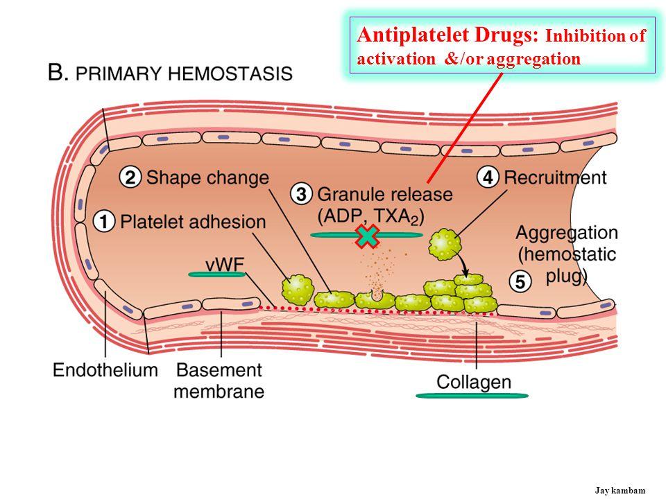 ANTIPLATELET DRUGS - Mechanisms  Aspirin- Thromboxane A2 Inhibitors  Clopidogrel (Plavix)  Prasugrel (apagrel) Thienopyridines  Ticlopidine (Ticlid)  Aggrastat (tirofiban)  ReoPro (abciximab) GP IIb/IIIa Antagonists  Integrilin (eptifibatide) P2Y12/ADP Receptor Inhibitors Jay kambam