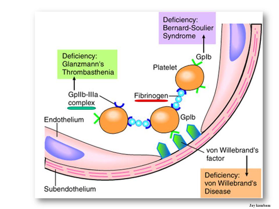Antiplatelet Drugs: Inhibition of activation &/or aggregation Jay kambam