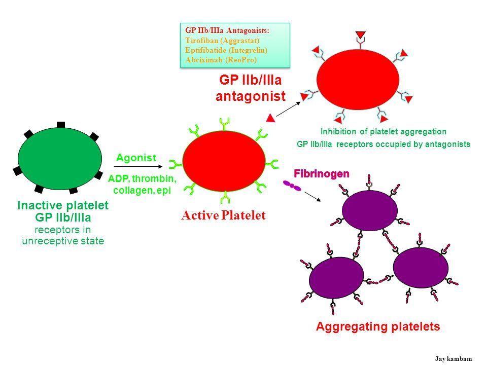 Platelet Activation Pathways Arachidonic acid TxA 2 GP IIb/IIIa Epinephrine Collagen Thrombin ADP P2Y12 PAR-4 GP1b vWF Fibrinogen Jay kambam