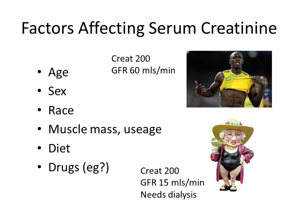 Factors Affecting Serum Creatinine Age Sex Race Muscle mass, useage Diet Drugs (eg?) Creat 200 GFR 60 mls/min Creat 200 GFR 15 mls/min Needs dialysis
