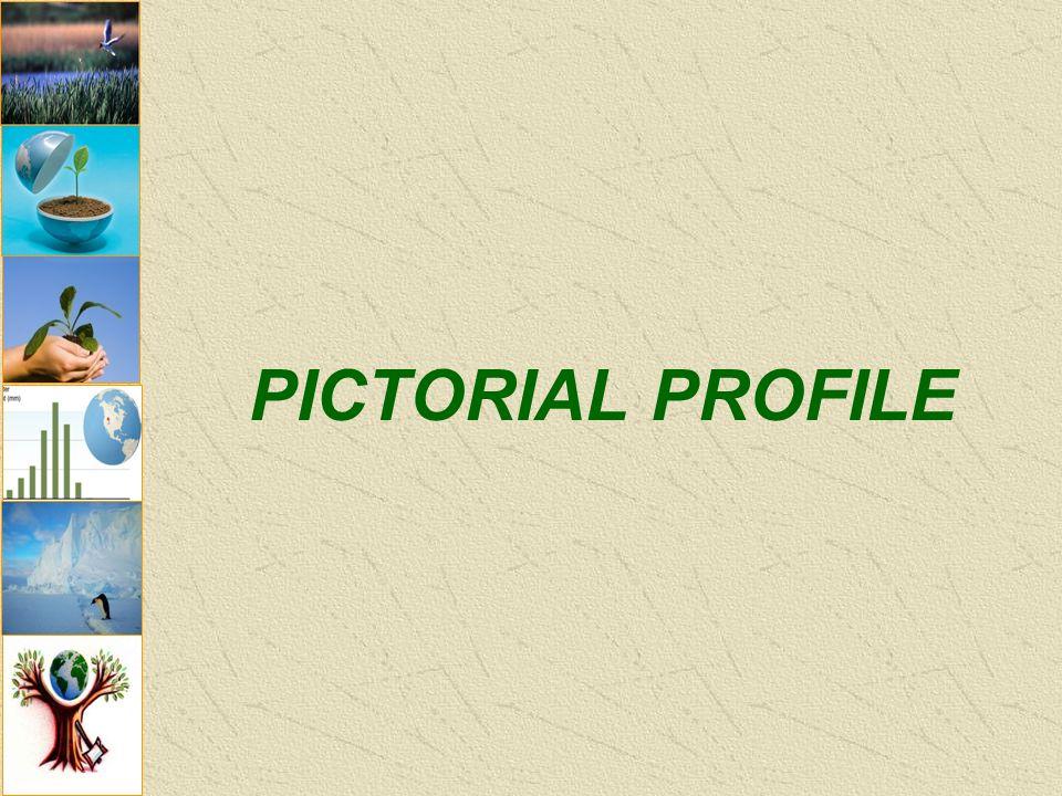 PICTORIAL PROFILE
