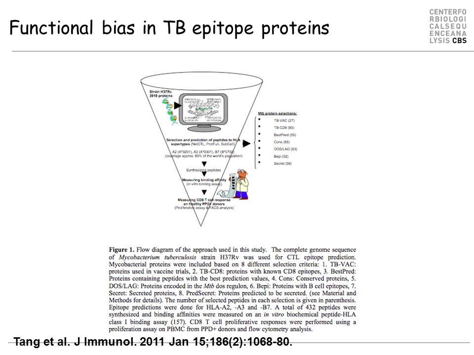 Functional bias in TB epitope proteins Tang et al. J Immunol. 2011 Jan 15;186(2):1068-80.