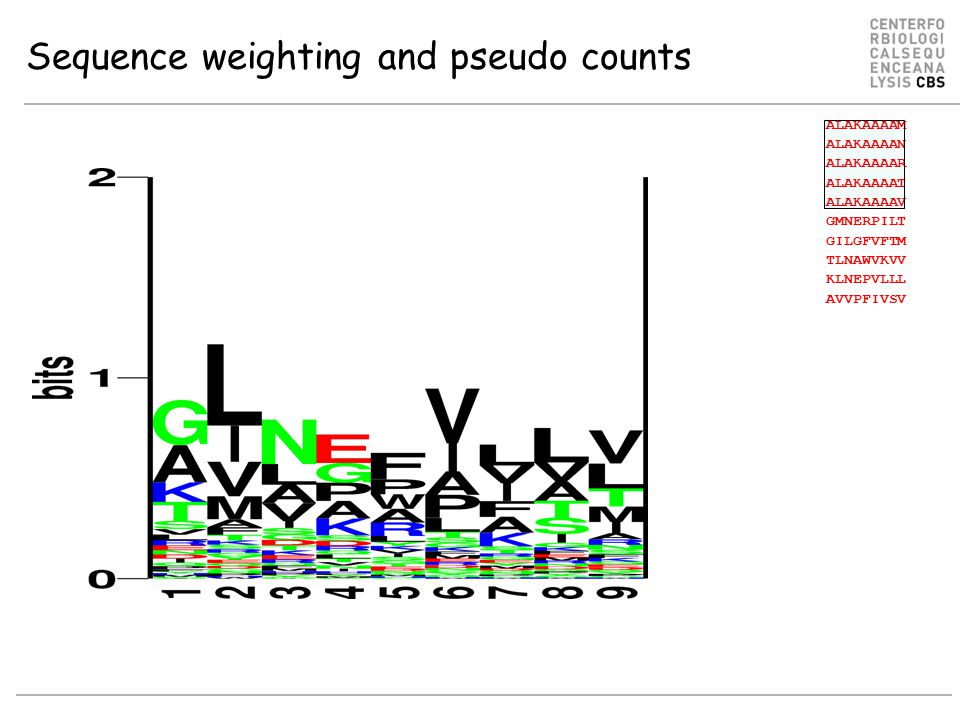 Sequence weighting and pseudo counts ALAKAAAAM ALAKAAAAN ALAKAAAAR ALAKAAAAT ALAKAAAAV GMNERPILT GILGFVFTM TLNAWVKVV KLNEPVLLL AVVPFIVSV