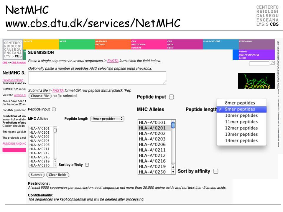 NetMHC www.cbs.dtu.dk/services/NetMHC
