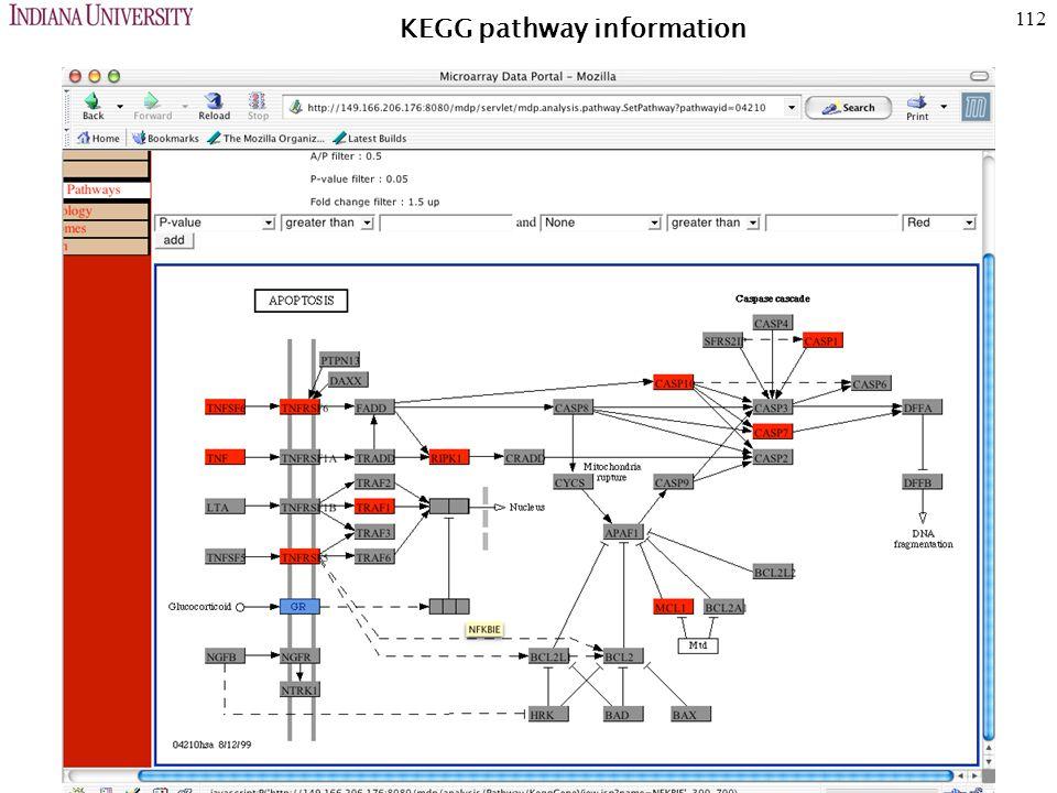 112 KEGG pathway information