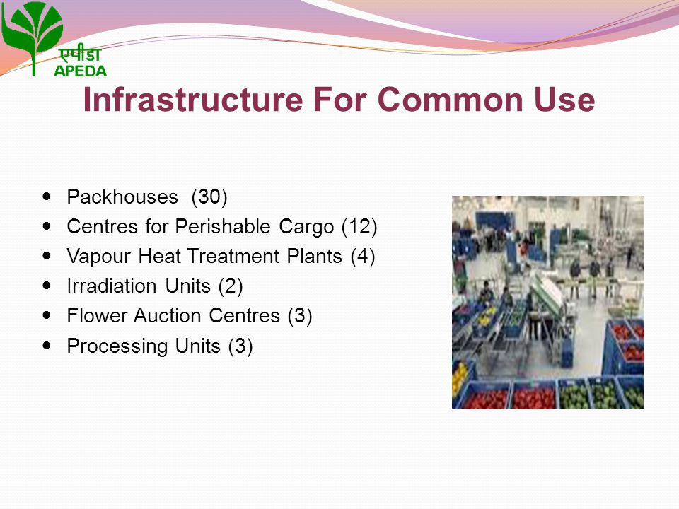 Infrastructure For Common Use Packhouses (30) Centres for Perishable Cargo (12) Vapour Heat Treatment Plants (4) Irradiation Units (2) Flower Auction