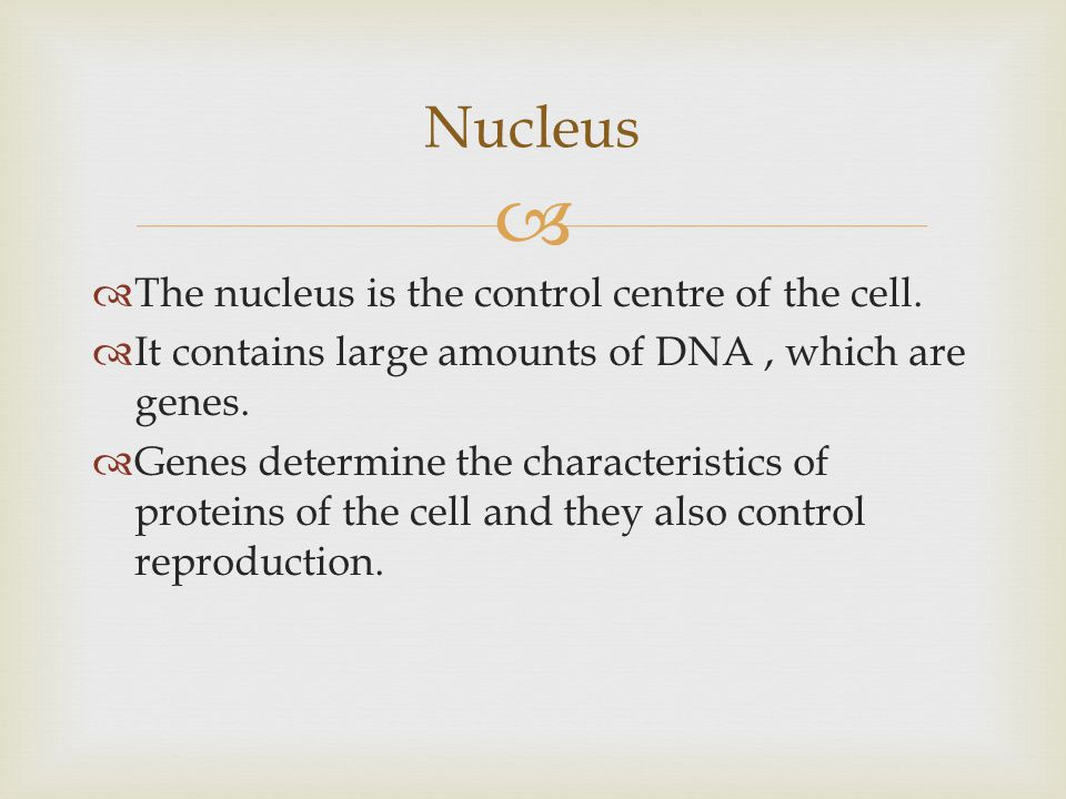   The nucleus is the control centre of the cell.