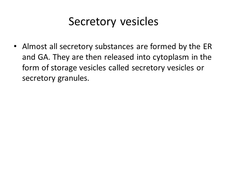 Secretory vesicles Almost all secretory substances are formed by the ER and GA.