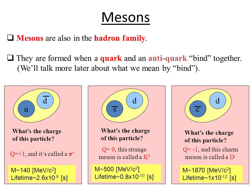 Mesons  Mesons are also in the hadron family.