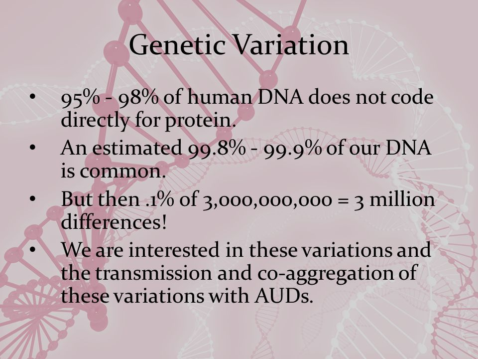 Genetic Variation 95% - 98% of human DNA does not code directly for protein.