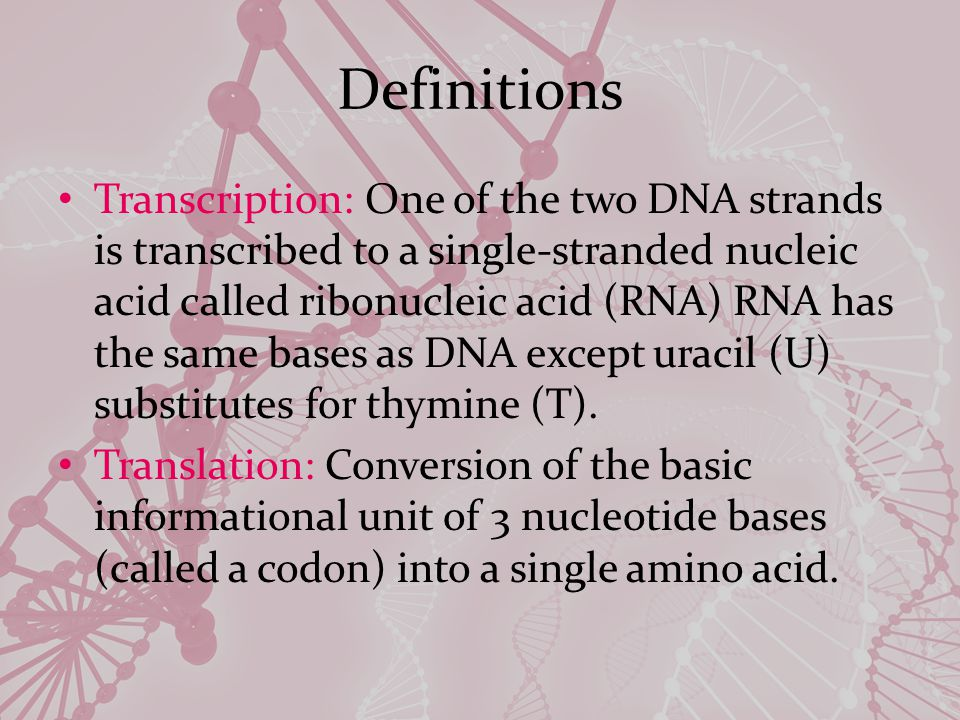 Definitions Transcription: One of the two DNA strands is transcribed to a single-stranded nucleic acid called ribonucleic acid (RNA) RNA has the same bases as DNA except uracil (U) substitutes for thymine (T).
