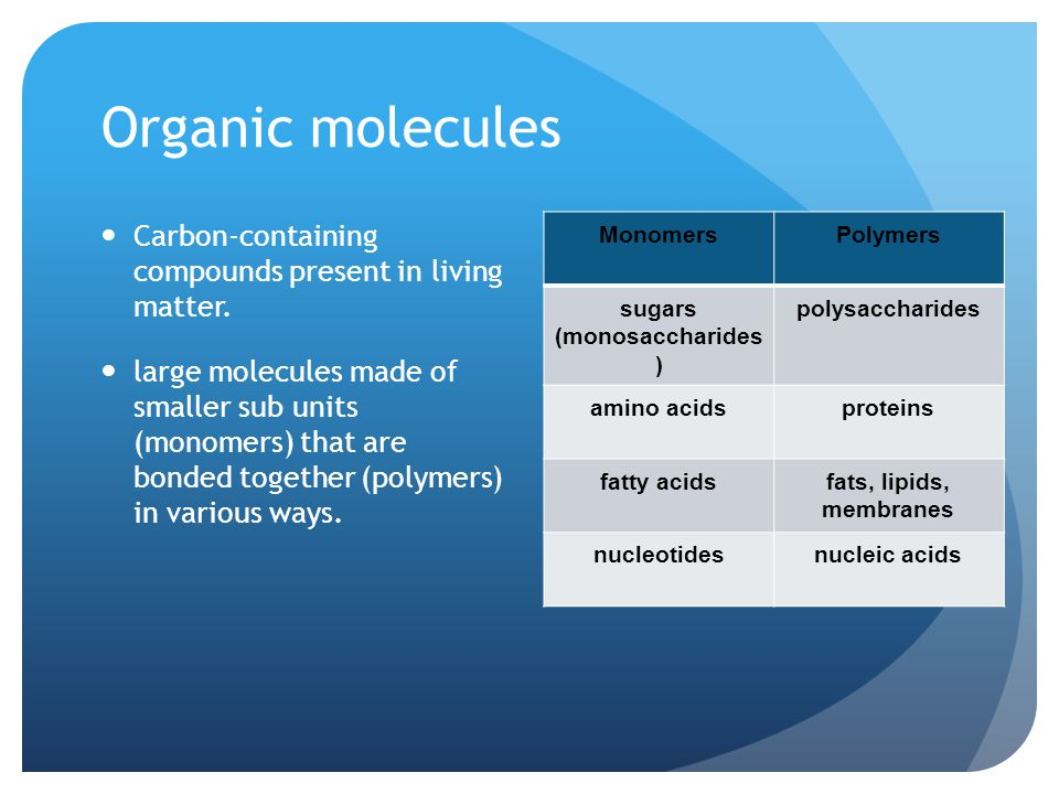 Carbohydrates The basic unit is a sugar molecule, a monosaccharide.