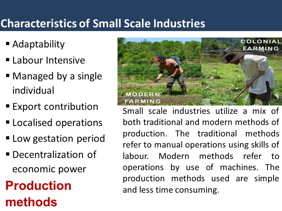 Characteristics of Small Scale Industries  Adaptability  Labour Intensive  Managed by a single individual  Export contribution  Localised operati