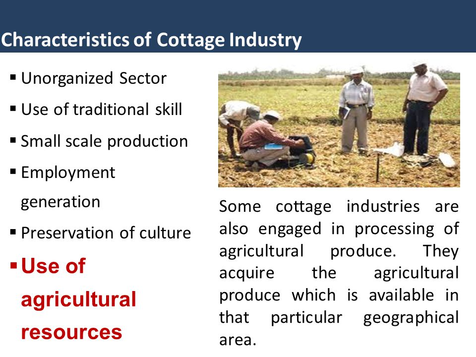 Characteristics of Cottage Industry  Unorganized Sector  Use of traditional skill  Small scale production  Employment generation  Preservation of