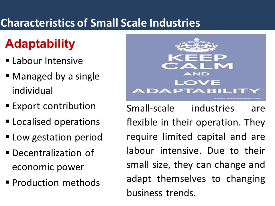 Characteristics of Small Scale Industries Adaptability  Labour Intensive  Managed by a single individual  Export contribution  Localised operations  Low gestation period  Decentralization of economic power  Production methods Small-scale industries are flexible in their operation.