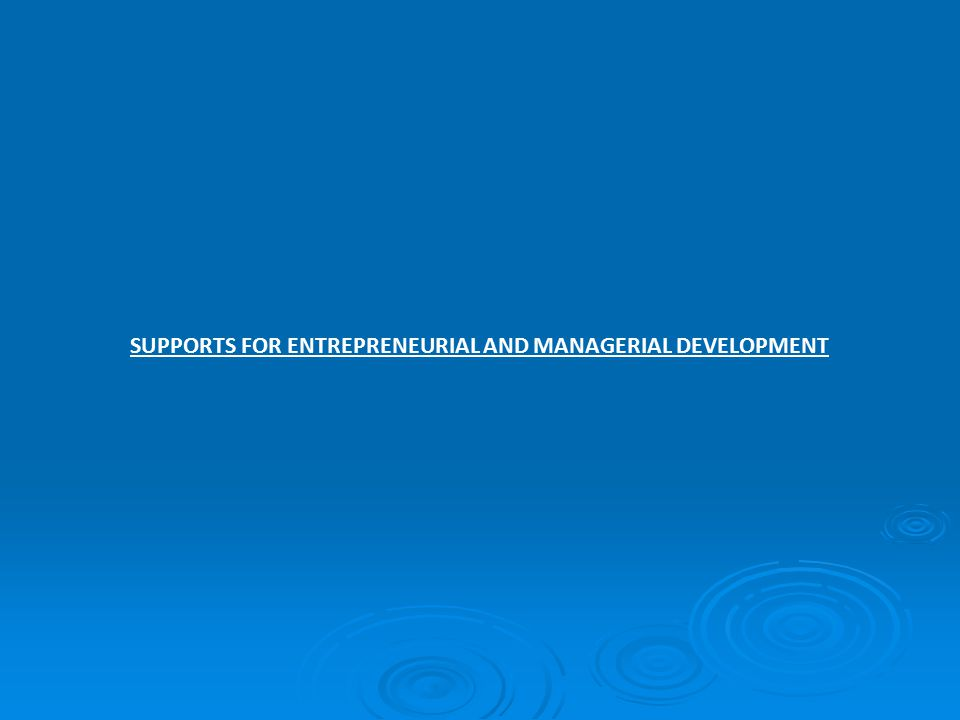 SUPPORTS FOR ENTREPRENEURIAL AND MANAGERIAL DEVELOPMENT