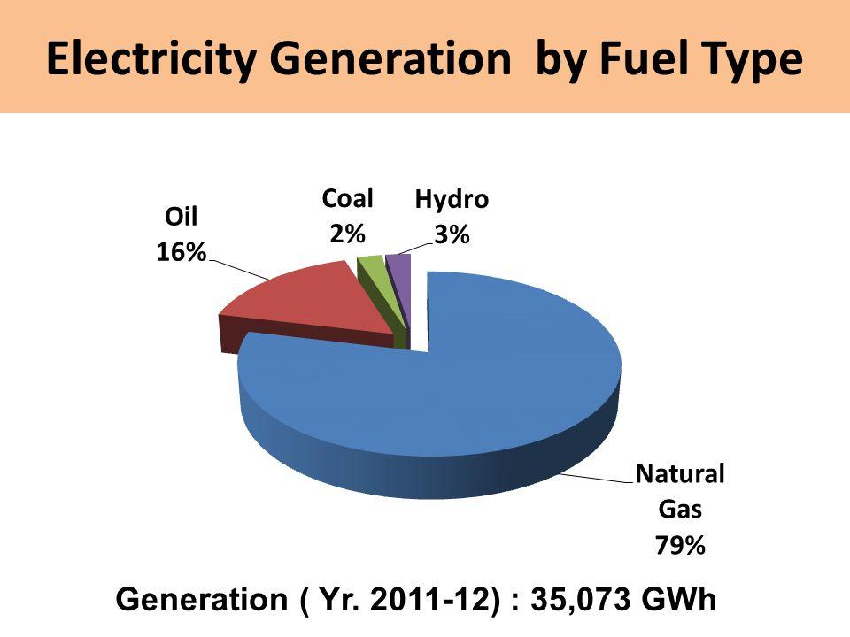 Electricity Generation by Fuel Type Generation ( Yr. 2011-12) : 35,073 GWh