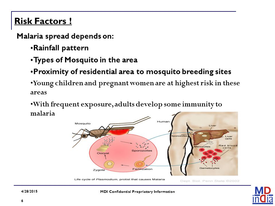 4/28/2015 MDI Confidential Proprietary Information 6 Malaria spread depends on: Rainfall pattern Types of Mosquito in the area Proximity of residentia
