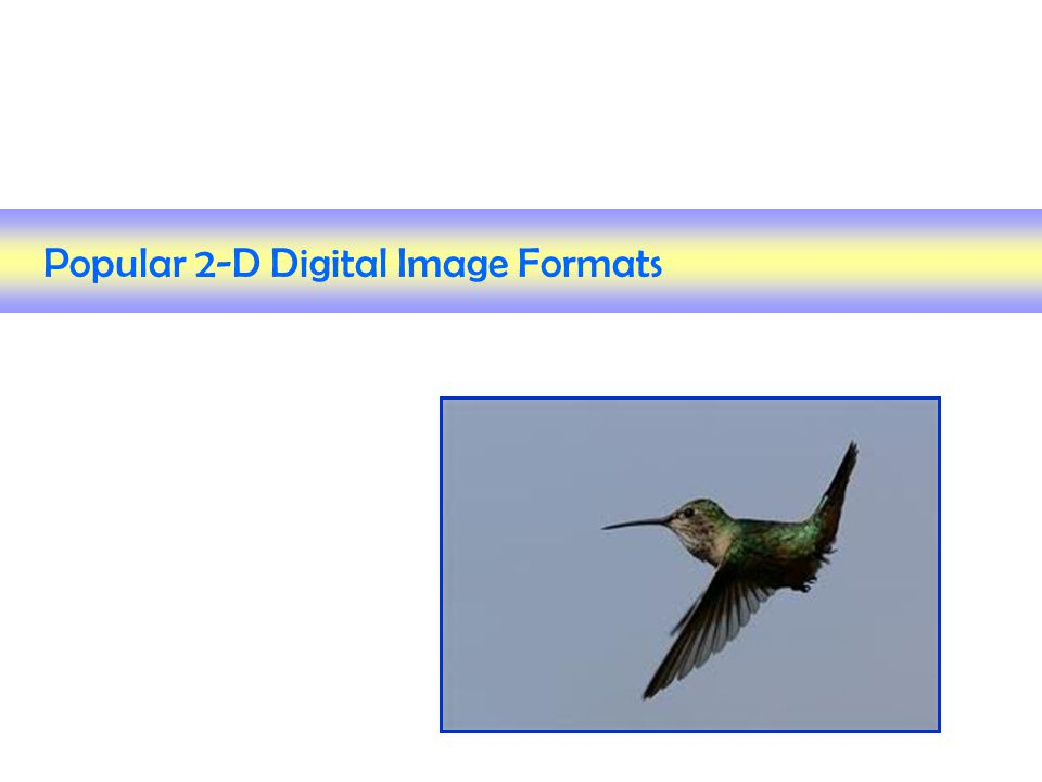 Popular 2-D Digital Image Formats