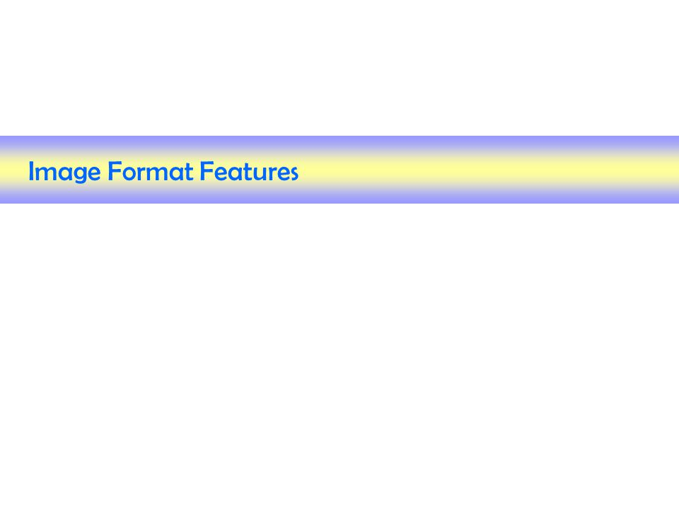 Image Format Features