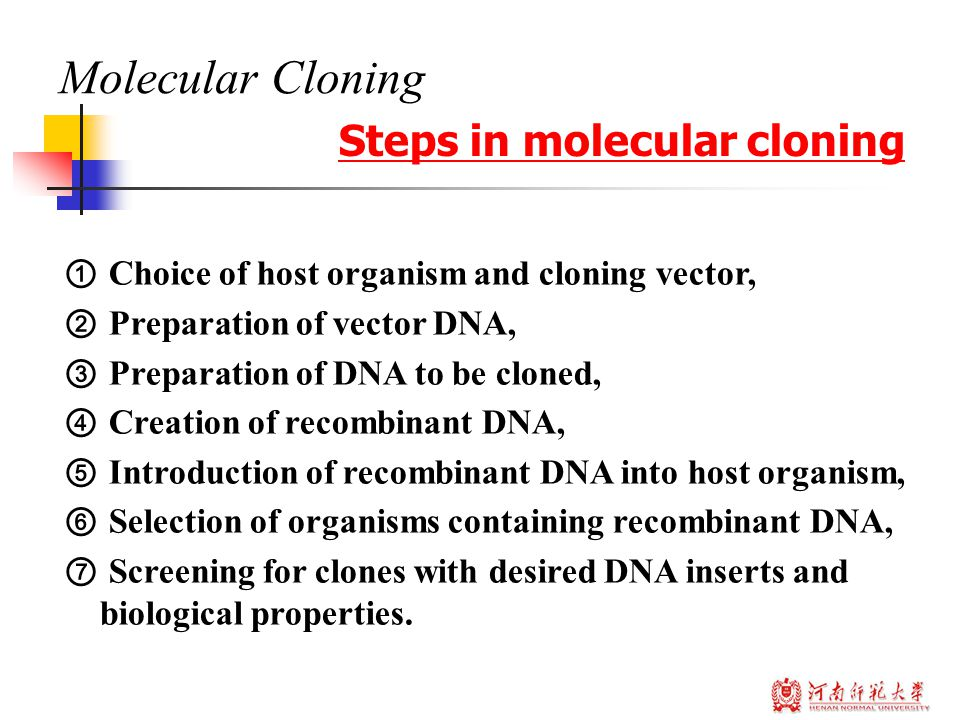 Molecular Cloning Steps in molecular cloning ① Choice of host organism and cloning vector, ② Preparation of vector DNA, ③ Preparation of DNA to be clo