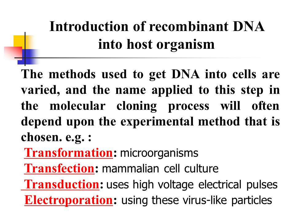 The methods used to get DNA into cells are varied, and the name applied to this step in the molecular cloning process will often depend upon the experimental method that is chosen.