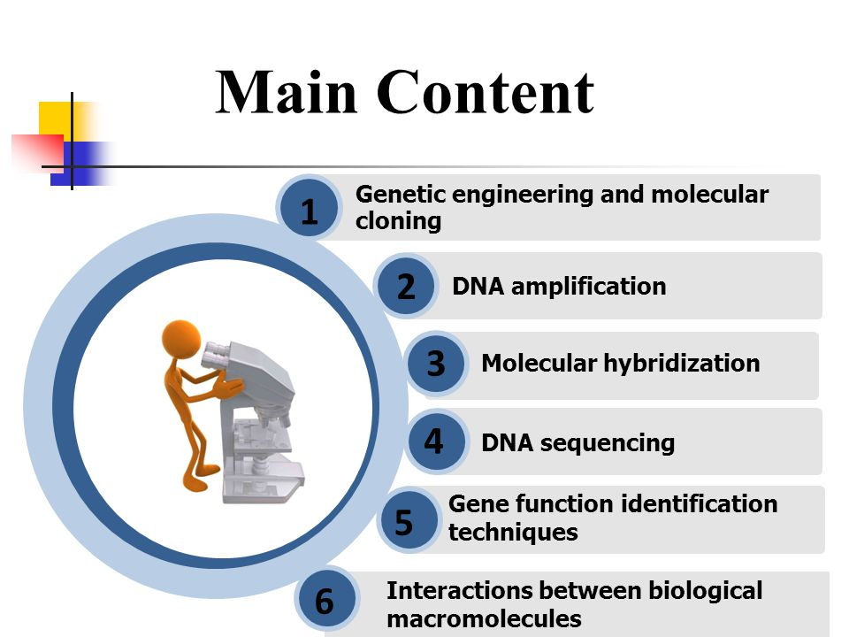 Genetic engineering and molecular cloning 1 DNA amplification 2 Gene function identification techniques 5 6 6 Molecular hybridization 3 DNA sequencing 4 Interactions between biological macromolecules Main Content