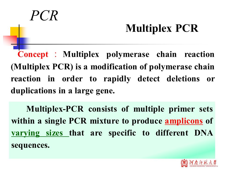 PCR Concept : Multiplex polymerase chain reaction (Multiplex PCR) is a modification of polymerase chain reaction in order to rapidly detect deletions