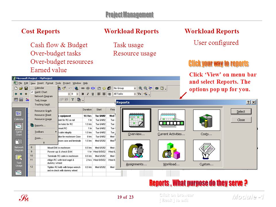 19 of 23 Cost Reports Cash flow & Budget Over-budget tasks Over-budget resources Earned value Workload Reports Task usage Resource usage Click 'View'