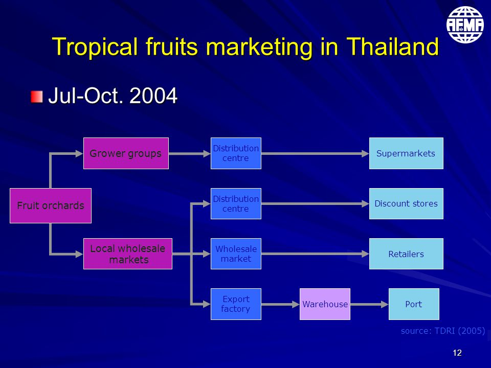 12 Tropical fruits marketing in Thailand Jul-Oct. 2004 Fruit orchards Grower groups Local wholesale markets Distribution centre Distribution centre Wh