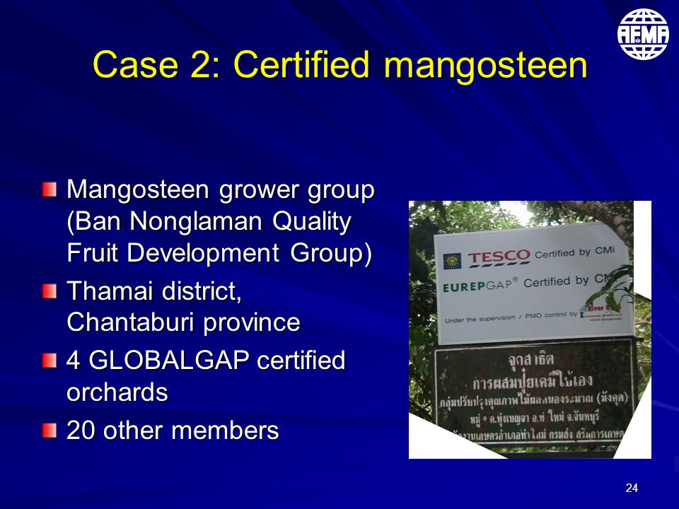 24 Case 2: Certified mangosteen Mangosteen grower group (Ban Nonglaman Quality Fruit Development Group) Thamai district, Chantaburi province 4 GLOBALGAP certified orchards 20 other members