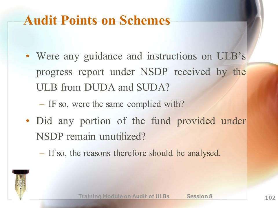 Training Module on Audit of ULBs Session 8 102 Audit Points on Schemes Were any guidance and instructions on ULB's progress report under NSDP received