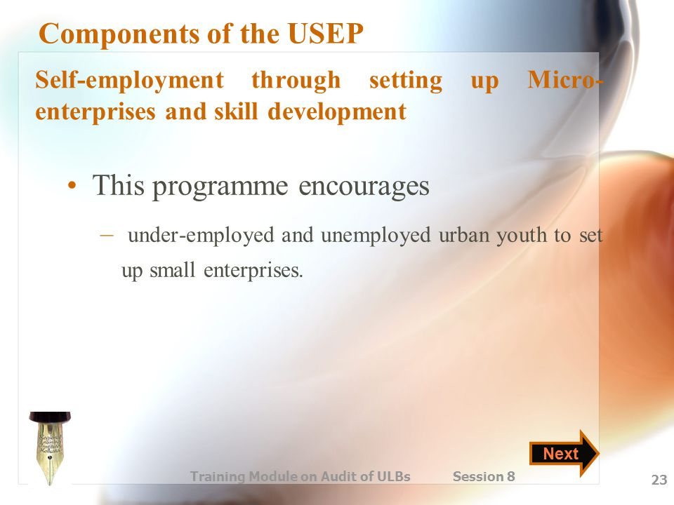 Training Module on Audit of ULBs Session 8 23 Components of the USEP This programme encourages – under-employed and unemployed urban youth to set up s