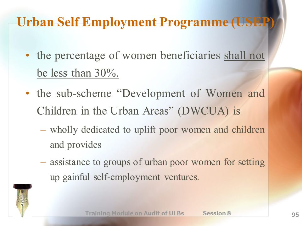 Training Module on Audit of ULBs Session 8 95 Urban Self Employment Programme (USEP) the percentage of women beneficiaries shall not be less than 30%.